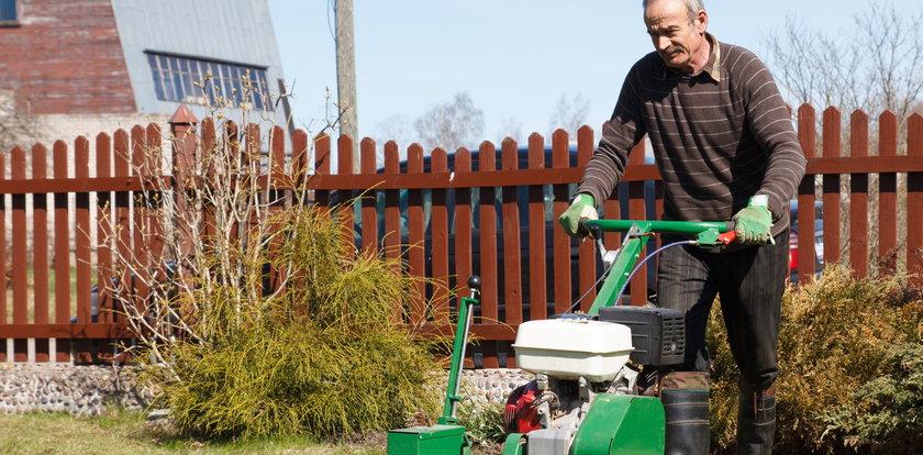 MPO odbierze zielone odpady