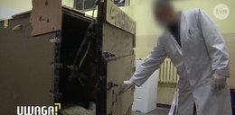"""Uwaga! TVN: Ofiara porwania: """"Włożyli mnie do trumny"""""""