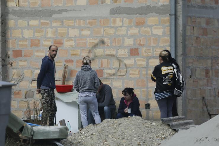 Pas izujedao ženu u Pančevu