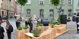 Mały park na Małym Rynku