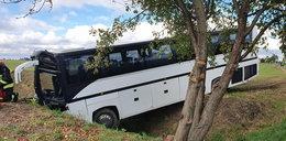 Autobus wjechał do rowu. 31 dzieci trafiło do szpitali