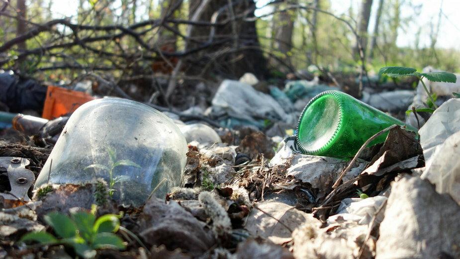 Co zrobić, gdy widzimy dzikie wysypiska śmieci?