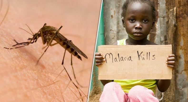 Malaria is a deadly disease