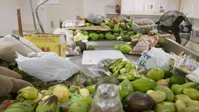 Co dzieje się z jedzeniem konfiskowanym na lotnisku?