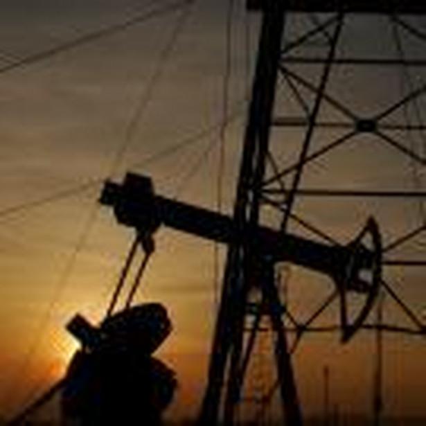 """Spółki te chcą eksploatować obszary zwane przez Norwegów """"dojrzałymi"""", czyli takimi, na których zaprzestały już wydobycia największe światowe koncerny paliwowe. Na terenach tych pozostały jednak dziesiątki nietkniętych mniejszych pokładów ropy i gazu, których wykorzystanie było nieopłacalne dla energetycznych gigantów."""