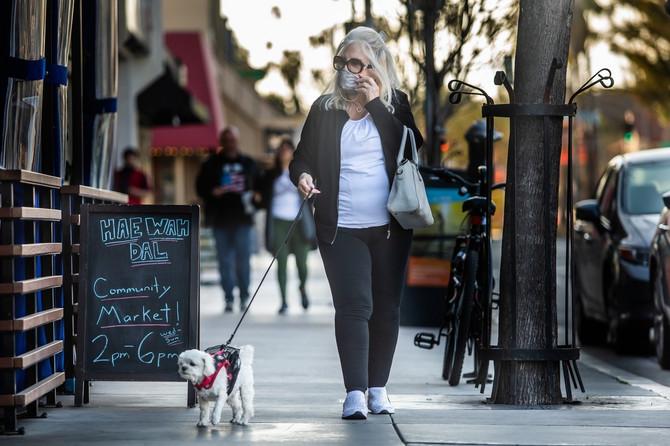 U teoriji zdrav pas može da izdrži 12 sati, a da ne izvrši nuždu