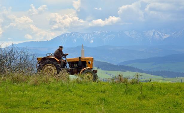 Od piątku rolnicy mogą składać wnioski o dopłaty bezpośrednie przez internet