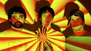 Animal Collective (fot. Domino Records)