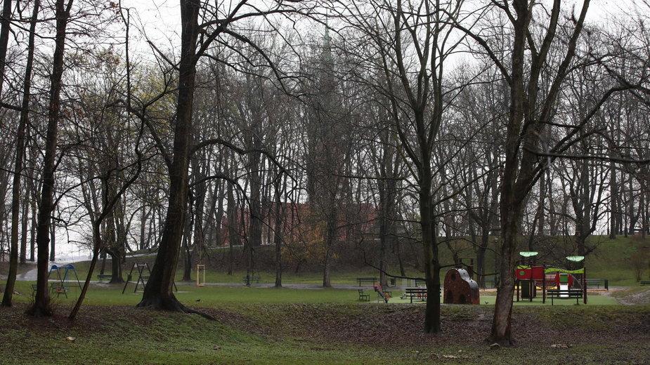 Park Bednarskiego w Krakowie