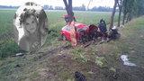 23-latka zginęła rozbijając się na drzewie. Siła uderzenia odarła pień z kory