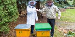 """Proboszcz z Piły założył pasiekę. """"Pszczółki zarobią nasz kościół"""""""