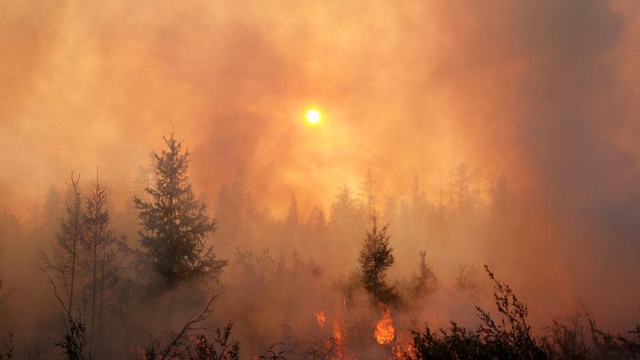Pożary na Syberii - klimatolodzy łączą je ze zmianami klimatu