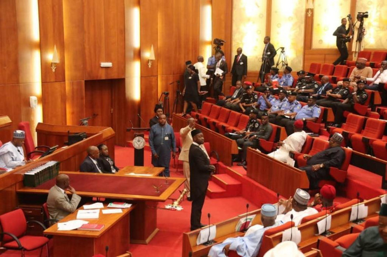 The Nigerian Senate in session [naijapolity]