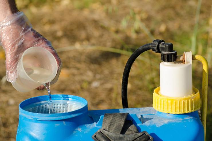 448563_pesticidi-foto-shutterstock