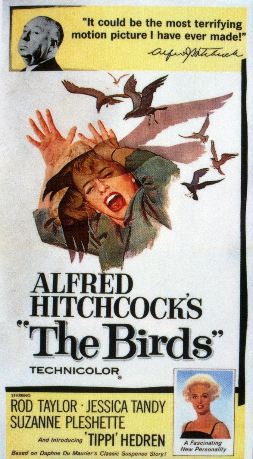 """Ptaki"" - plakat do filmu Alfreda Chitchocka"