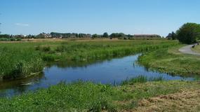 Skrzyżowanie rzek: płyną dalej, nie mieszając się