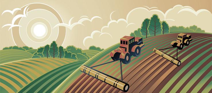 Njiva, poljoprivredni radovi