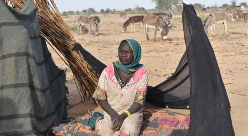 Over 100,000 displaced by resurgence of violence in Sudan's Darfur region