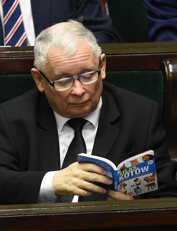 Prezes PiS Jarosław Kaczyński na sali sejmowej.