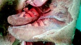 W Mongolii znaleziono 1500-letnią mumię
