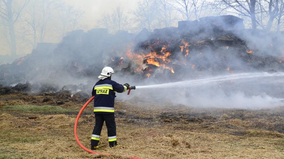 Z ogniem walczą strażacy