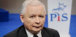 Kaczyński publicznie wyparł się kota: Nie jest mój!