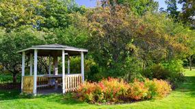 Jak wybudować altanę ogrodową?