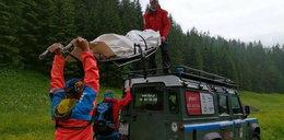 Znaleziono zwłoki w Tatrzańskim Parku Narodowym
