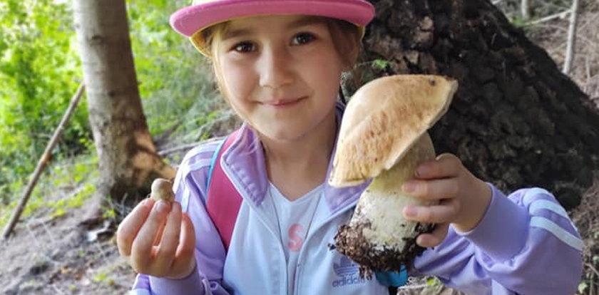 7-letnia Liliana kocha zbierać grzyby! Pasję do grzybobrania odziedziczyła w genach