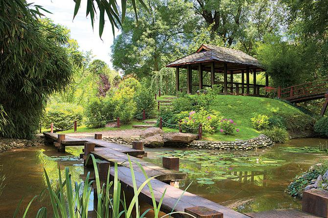 Šta se ima beogradski Jevremovac, popularna botanička bašta,
