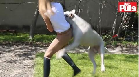 Voditeljku Parova ugrizao pas na snimanju! VIDEO