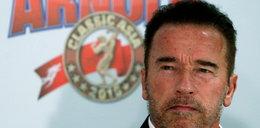 Trump kontra Schwarzenegger. Kto wygrał potyczkę?