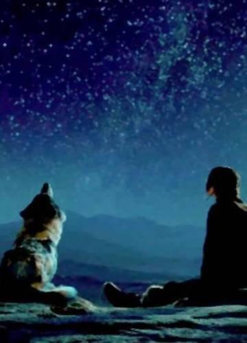 ember kutyával kereső nő a szív- trailer
