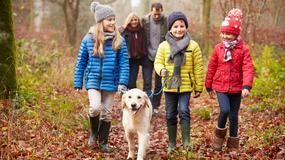 Gdzie w Olsztynie iść na spacer z dzieckiem?