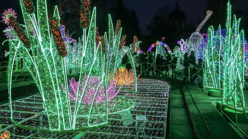Królewski Ogród Światła, Wilanów