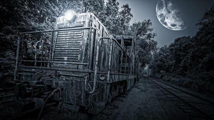 voz koji putuje kroz vreme