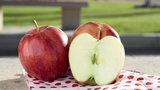 Jabłka – niedoceniany polski superfood