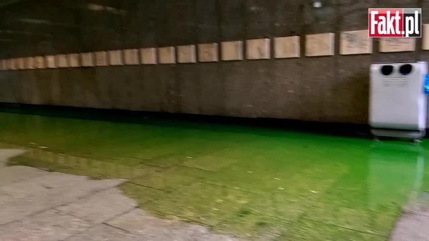 Zielona woda w Przejściu Świdnickim we Wrocławiu