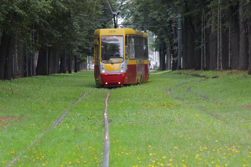 Wojska Polskiego w Łodzi bez tramwaju na Doły