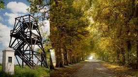 Kopaszewska droga krzyżowa - arcydzieło z Paryża na wielkopolskiej prowincji