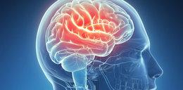 Naukowcy potrafią już skasować złe wspomnienia