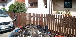 Straż miejska walczy ze śmieciarzami