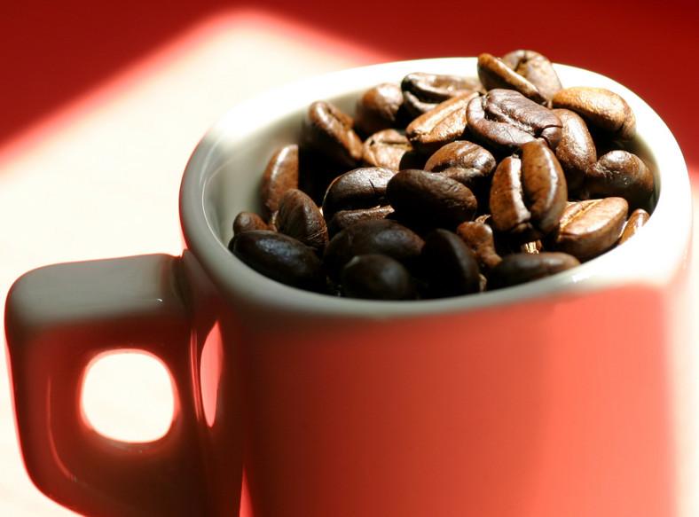 Kawosze żyją dłużej