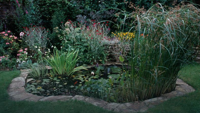 Ogromnie Oczko wodne w ogrodzie – jak zrobić, gotowe oczka wodne LK15