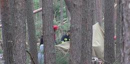 """""""Zdążyłem wybiec z namiotu tuż przed tym jak spadło drzewo"""" - Harcerz, który przeżył noc w Suszku"""