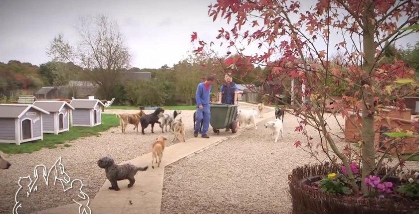 Schronisko dla zwierząt w Eure