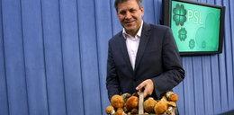 Piechociński zrozpaczony: W lesie brak grzybów!