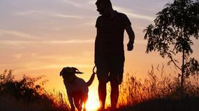 Pies najlepszym przyjacielem mężczyzny