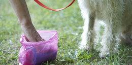 Torebki na psie kupy idealne do kanapek dla dzieci z Wąbrzeźna