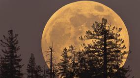 Kiedy zobaczymy na niebie superksiężyc?